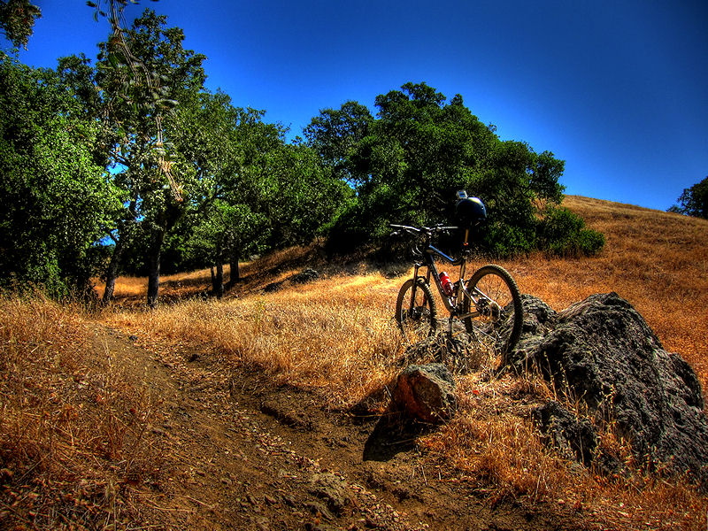 The 15 Best Mountain Biking Trails in the USA