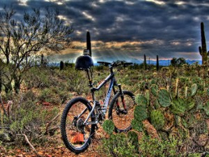 Mountain Biking the Tucson Trails